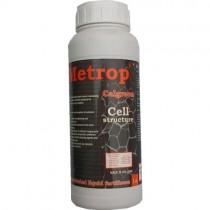 GNOJILO METROP CALGREEN 1L